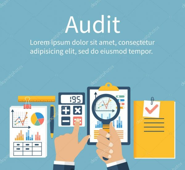 depositphotos_105676380-stock-illustration-auditing-concepts-vector-flat-style
